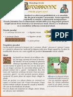 Carcassonne Extensia 5 Abatia Si Primarul(Full Permission)