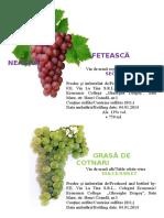 FETEASCĂ NEAGRĂ+grasa, etichete vinuri
