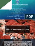 Aspectos Sensoriales de La Carne.