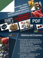 Vision y Planes Peru Berries