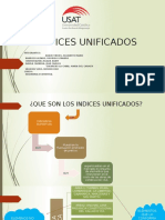 INDICES-UNIFICADOS.pptx