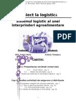 Proiect Logistica Milka