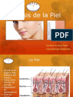 Analisis Piel (1)