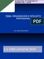 CLASE 01 Organizacion