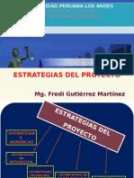 9. Estrategias Del Proyecto.
