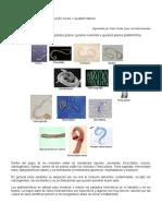 RESUMEN-antihelminticos.doc