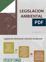 2.4. Legislacion Ambiental (1)