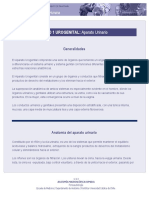 Anatomia de Los Ri Ñones UROLOGIA