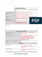 Resumen ejecutivo (1).doc