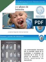 Diarreas y planes de hidratación.pdf