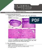 """Dr Agus - """"Skin Tumor & Lymphoid System"""" - Skin Tumors"""