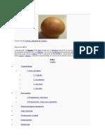 monografia de huevos