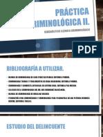 Práctica Criminológica II