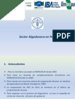 Diagostico Sector Algodonero Peru