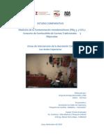 Estudio Comparativo de Cocinas Mejoradas y Tradicionales en Cajamarca, Perú 2010
