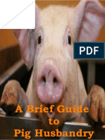 A Brief Guide to Pig Husbadry