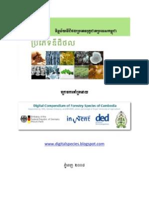 ប្រភេទឌីជីថល (Digital Species in Khmer)