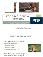 Lecture 2 Zoology
