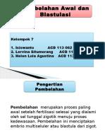PPT PEMBELAHAN KEL 7.pptx
