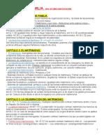 45202946-DERECHO+DE+FAMILIA 2016.docx