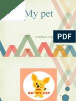 ppt go my pet final