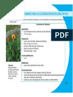 MedicinaAlternativa5.pdf