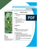 MedicinaAlternativa22.pdf