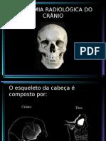 ANATOMIA DE CRÂNIO