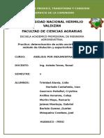 INTRODUCCION ANALISIS XIND.docx