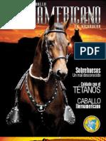 Revista del Caballo Iberoamericano en Nicaragua - Edición 4