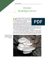 Inovasi Budidaya Jamur