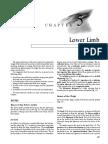 Snell Lower Limb