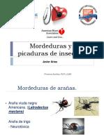 Mordeduras y Picaduras de Insectos