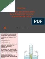 Variación del rendimiento de la fotosíntesis con la intensidad de la luz