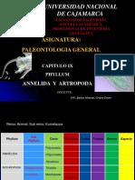Phyllum Annelida -Arthropoda