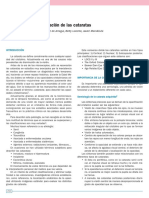 Cap016 CATARATA
