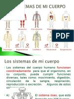 LOS  SISTEMAS DE MI CUERPO (1).ppt