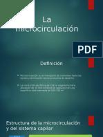 microcirculacion