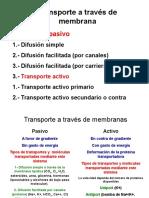 Transporte a Través de Membrana Pasivo y Activo