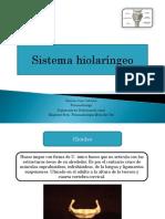 sistema hiolaringeo.pdf