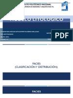 Modelo Litologico