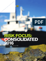 Risk Focus - Consolidated 2016