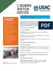 Tarea # 2 Informe Sobre Fundamentos Pedagógicos