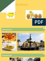 CLASE 13 -PRODUCCIÓN POLLO EVD..pptx
