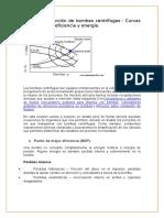 Cálculo y Selección de Bombas Centrífugas