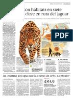 Antioquia, con hábitats en siete regiones es clave en ruta de jaguar