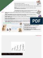 Esquema - Clasificación de Los Periódicos, La Evolución Del Medio Impreso