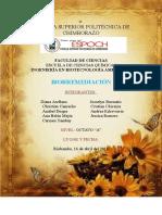 BIORREMEDIACIÓN FINAL.docx