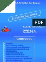Poluição Aquática Grupo 8 8ºA