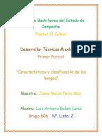Clasificación y Caracteríticas de Los Hongos